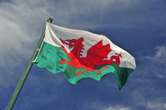 Plaid Cymru - Galles - Brexit - indipendentismo - partito - europeista - sinistra - elezioni - 2017 (7)