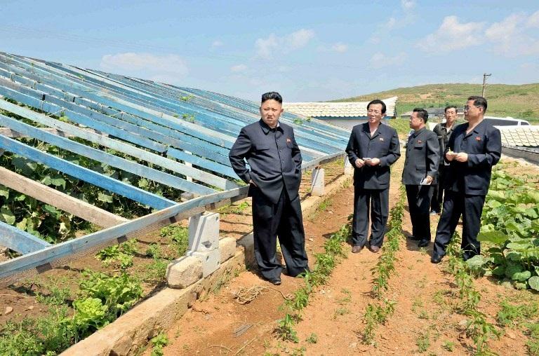 Siccita-Corea-del-Nord